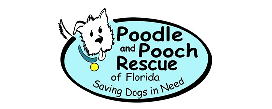 Poodle and Pooch Rescue of Florida