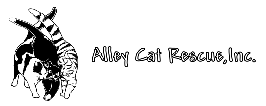 Alley Cat Rescue